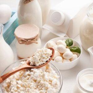 Lacteos y Huevos