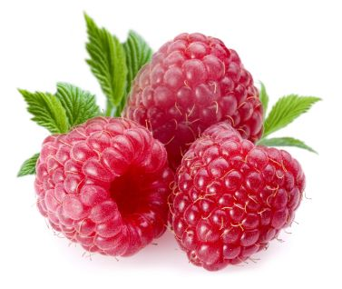 Raspberries; Objects on white background